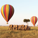 Hot Air Ballooning Safaris