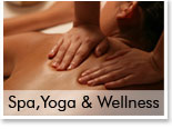 Spa,Yoga & Wellness
